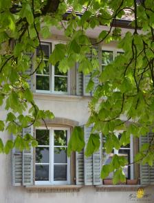 Bienne, basse-ville, fenêtres