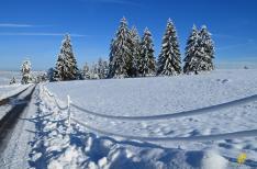 hiver11