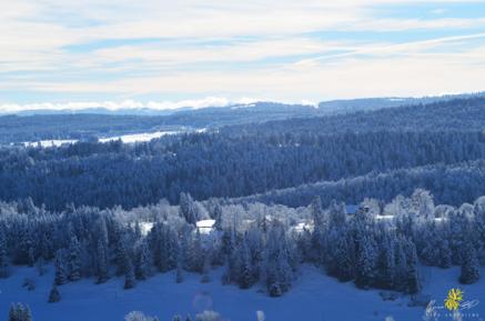 hiver14