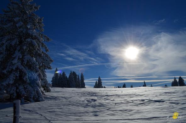 hiver8